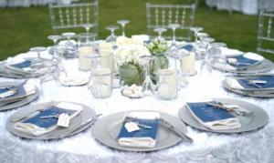 Wedding DJ Copamarina 6